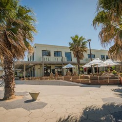cafe beachfront st. kilda palm trees hot republica