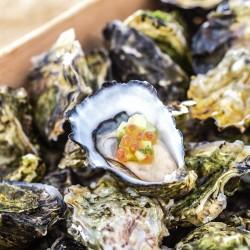 Fresh ocean food sea St. Kilda republica